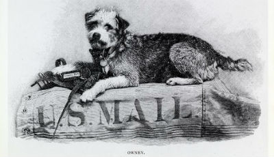 Owney the USPS Mascot